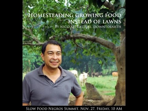 Homesteading Growing Food Instead of Lawns by Nico Aberasturi of DownToEarth