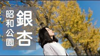 【Han & Dotter】日本東京立川昭和公園~銀杏怎麼可以這麼美😍😍