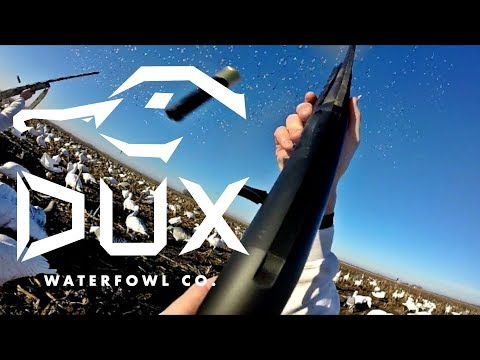 Waterfowl Company Announcement with Flair