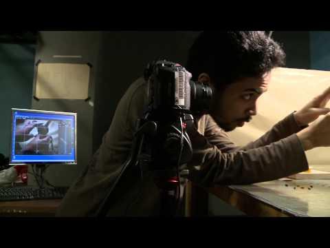 Film Animation Program, Concordia University, Montreal