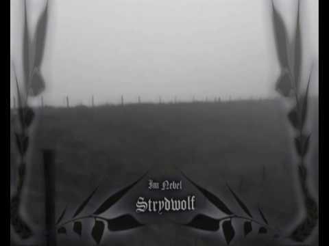 STRYDWOLF - IM NEBEL