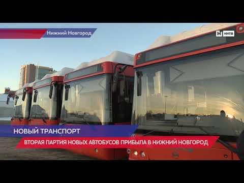 Вторая партия автобусов прибыла в Нижний Новгород