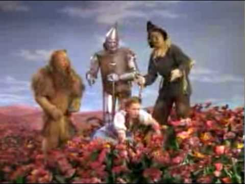 The Wizard Of Oz Poppies Youtube