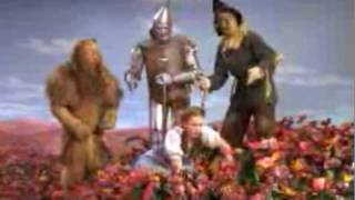 The Wizard of Oz - poppies