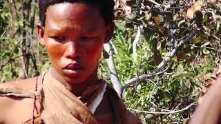Африка. Документальный фильм.