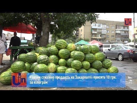 Кавуни стихійно продають на Закарпатті: просять 10 грн. за кілограм