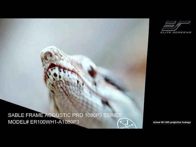 Elite Screens Sable Frame AcousticPro 1080P3 - Acoustic Transparent Projector Screen by JoelsterG4K
