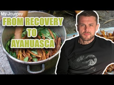From Recovery to Ayahuasca - My Experience from 12 Step Fellowship to Plant Medicine