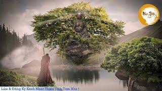 Nhạc Thiền Tịnh Tâm - KHỔ ĐAU nào rồi cũng sẽ đi qua Chỉ có BÌNH YÊN vì ta mà ở lại...