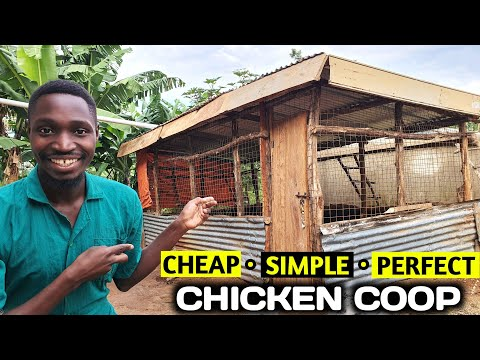 The CHEAPEST And EASIEST Chicken Coop You Can Make!