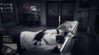 Grand Theft Auto V Mass Shooting in Gun Shop