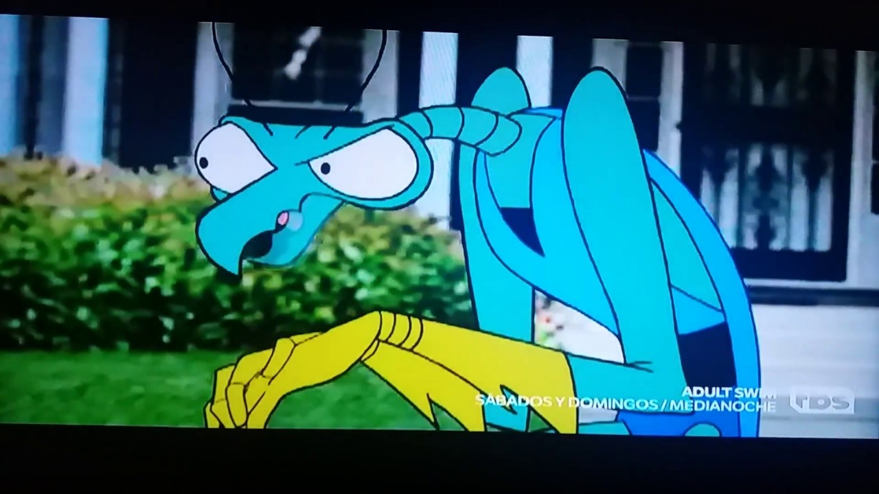 Adult swim latino america