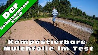 Kompostierbare Mulchfolie im Test