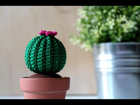 Amigurumi Cactus fiorito | Uncinetto, Cactus all'uncinetto ... | 360x480