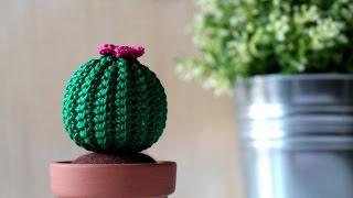 Cactus Fantasia Amigurumi Tejidos A Crochet : Cactus amigurumi (crochet): macetero tejido a crochet ...