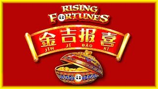NEW Rising Fortunes 💰 HIGH LIMIT Fu Dao Le 🏮 The Slot Cats 🎰😺😸🌮