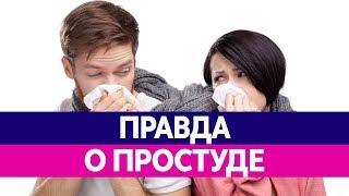 видео Простуда и грипп