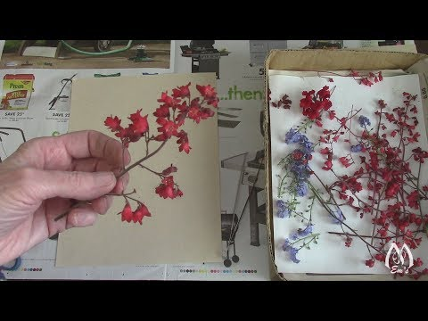 Pressing Flowers Demonstration | May Flowers | Pressed Flower Tips | Spring Garden