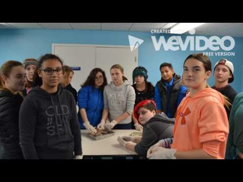 Nature's Classroom 2016 - Wareham Middle School