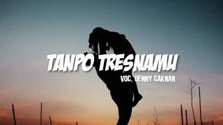 Denny Caknan - Tanpo Tresnamu [Unofficial Lyrics Video]