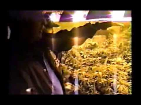 DEA-Miami Group10 Dec 21, 1991-  Homestead Hydroponic Grow
