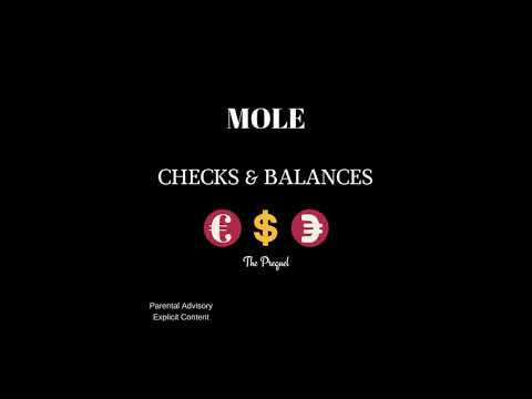 MOLE - Checks & Balances