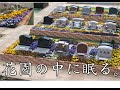 横浜唯一。手積みレンガの花壇墓地と花の永代供養墓。