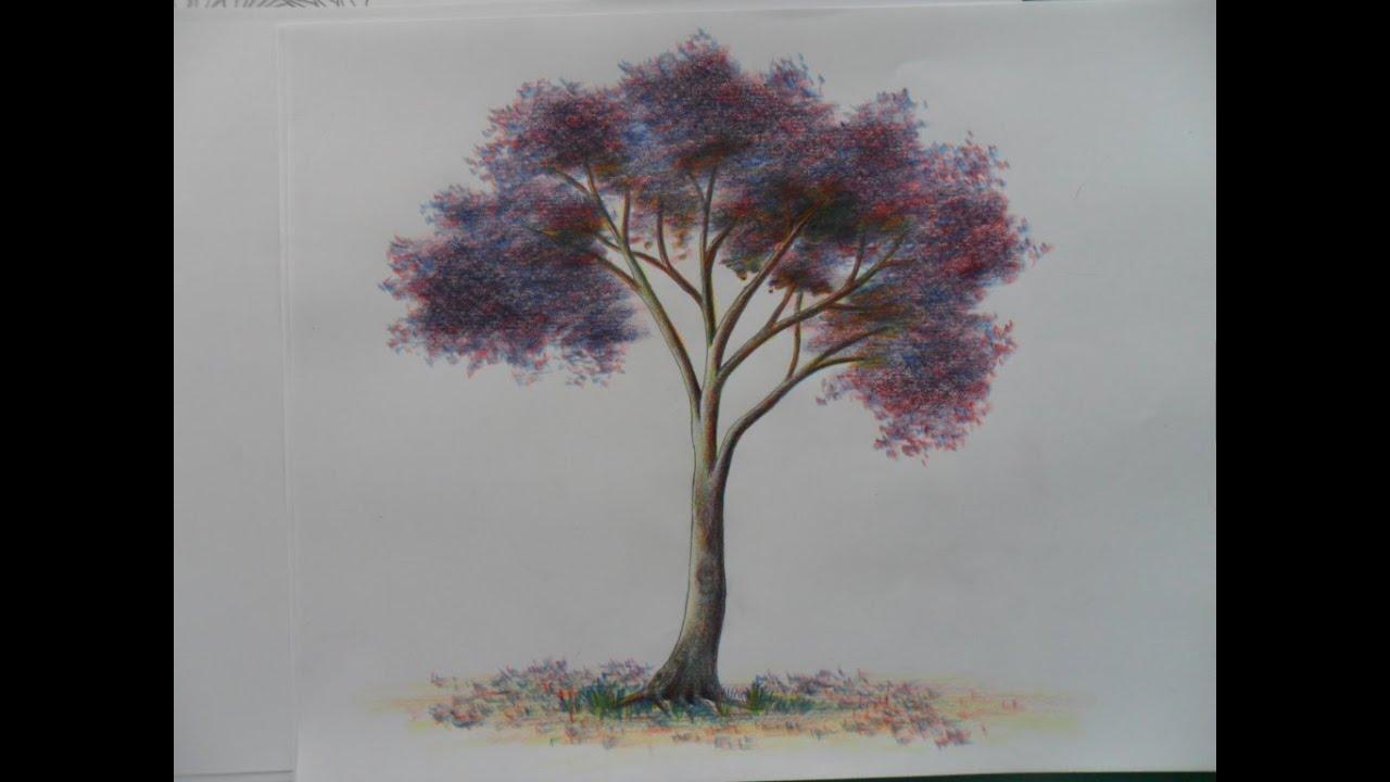 Como dibujar un Arbolito a Color, usando Sólo los 3 colores primarios, paso  a paso. Un Gualanday - YouTube