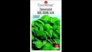 Семена шпината оптом(, 2013-05-06T13:05:52.000Z)