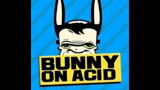 Bunny on acid - A caveman dance [Promo]
