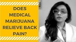 hqdefault - Medical Weed Back Pain