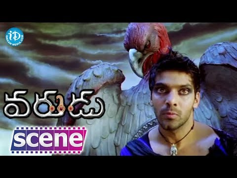 Varudu Movie Scenes - Karuna Bhushan Reveals The Past Of Bhanusri Mehra    Allu Arjun