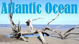 nude-sunbather-jekyll-island-driftwood-beach