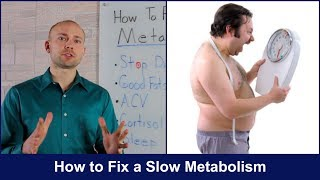 How to Fix a Slow Metabolism | Lose Weight Now