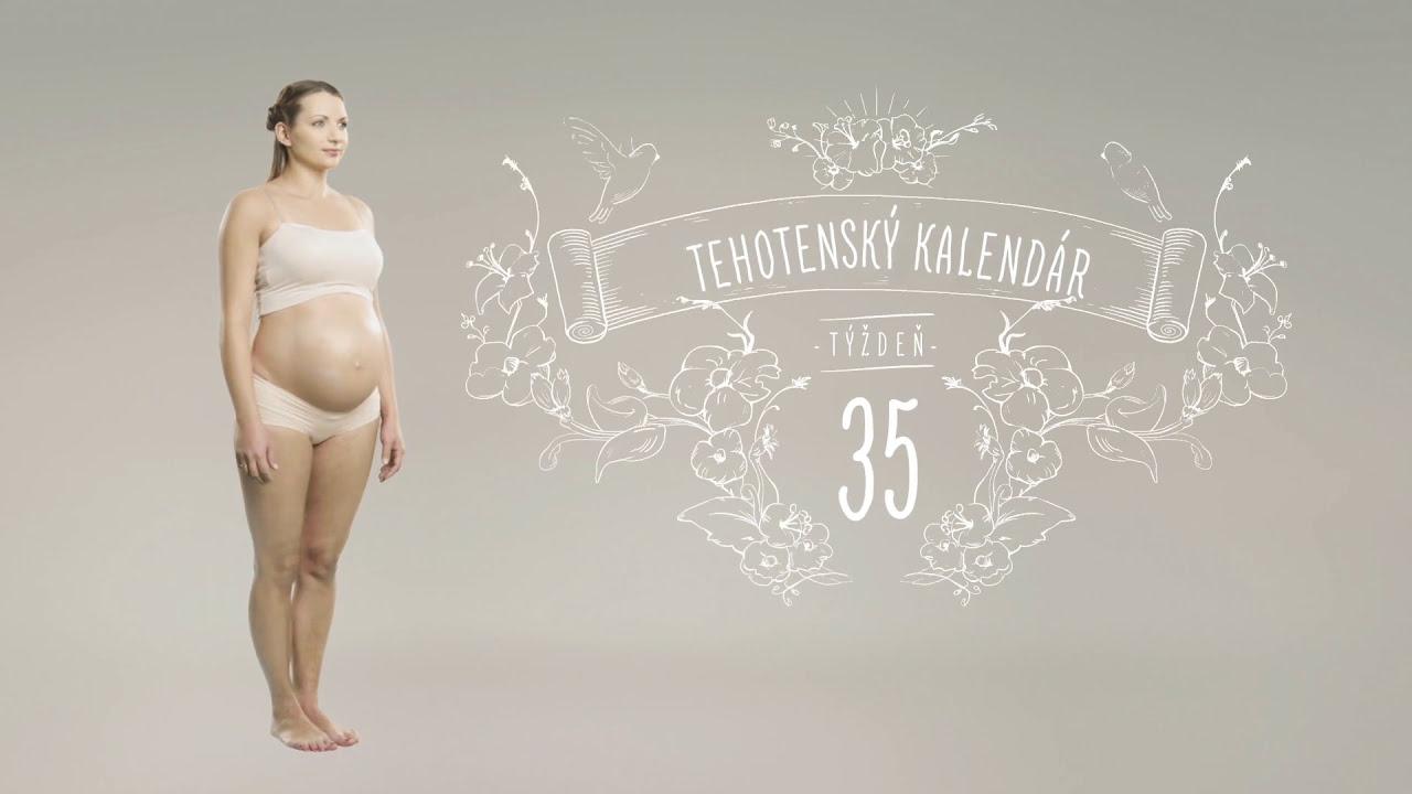 pampers tehotensky kalendar Tehotenský kalendár: 35. týždeň   YouTube pampers tehotensky kalendar