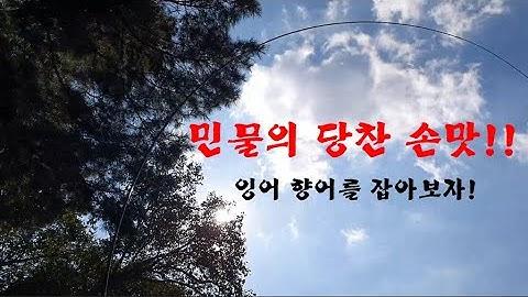 민물의장사와 물돼지를 잡아봅시다!(feat.성은낚시터)