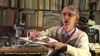 Козачки? Клопы? Москалики? Клопики? В Киеве? А Кто Это?