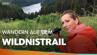 Durch die wilde Nordeifel | WDR Reisen