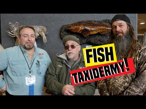 Fish Taxidermy With Rick Krane | Fish Mounted By Jeff Davis