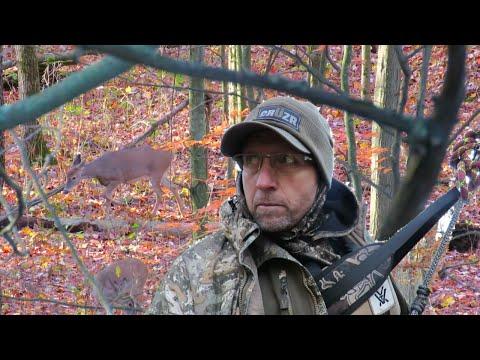 2020 Deer Season EP. 5 Saddle Hunting Michigan Public Land