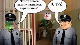 Наркоман арестован ракодилом