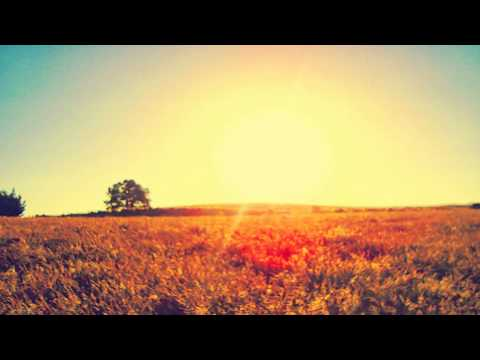 Mumford & Sons - I Will Wait (Unlike Pluto remix)