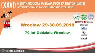 XXVI Międzynarodowa Wystawa Psów Rasowych - Wrocław 2018 - niedziela