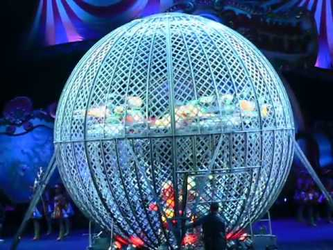 Ringling Bros Motorcycle Ball Of Death 7 At Once Just Like The Simpsons Movie Youtube