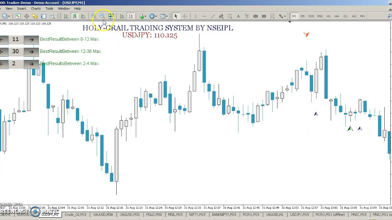 Holy grail of binary options