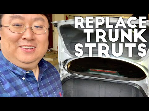 how-to-replace-trunk-struts