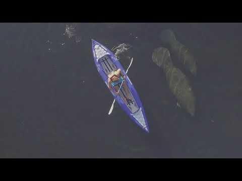 Kayak rental: Aquaglide Chelan kayak