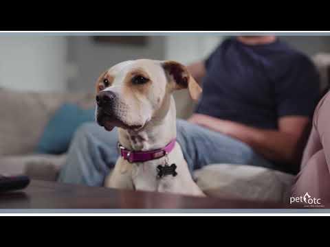 Calmatrol Pet Medicine Commercial