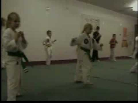 Mountain View Martial Arts Blocks and Kicks