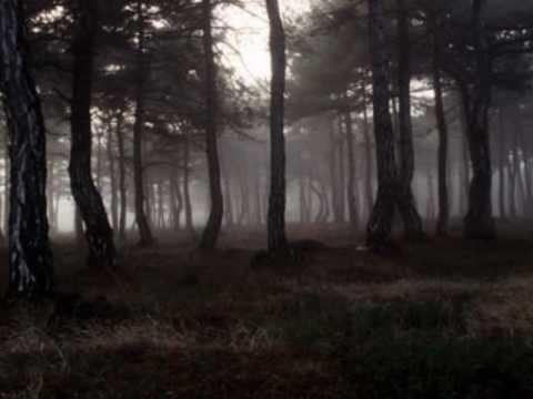 THE CURE - A Forest (lyrics)
